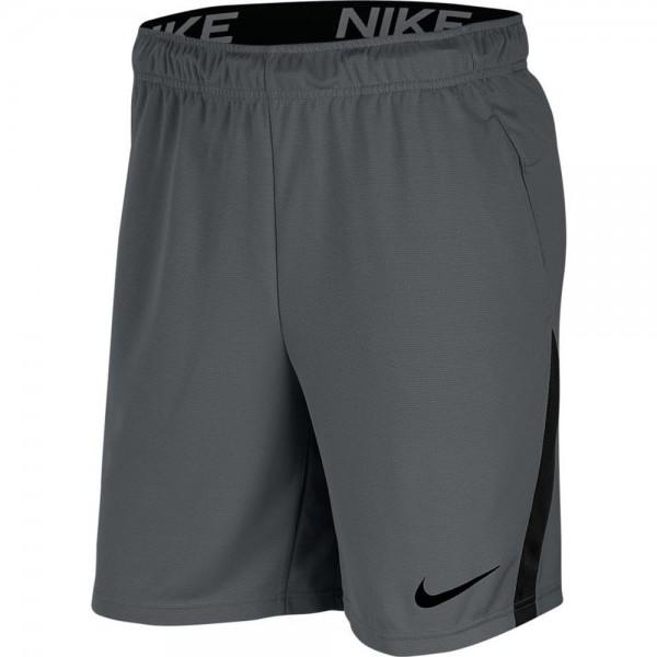 Nike Dri-FIT Shorts Herren grau